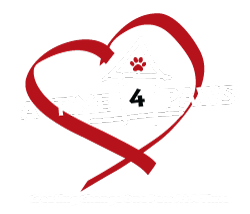 A Time 4 Paws